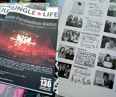 jungle0903.jpg
